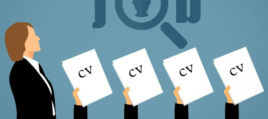 Job Search Hr Cv Opportunity  - mohamed_hassan / Pixabay